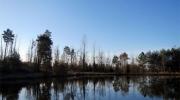 L\'étang de pêche