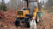 Cheyenne garde le tracteur