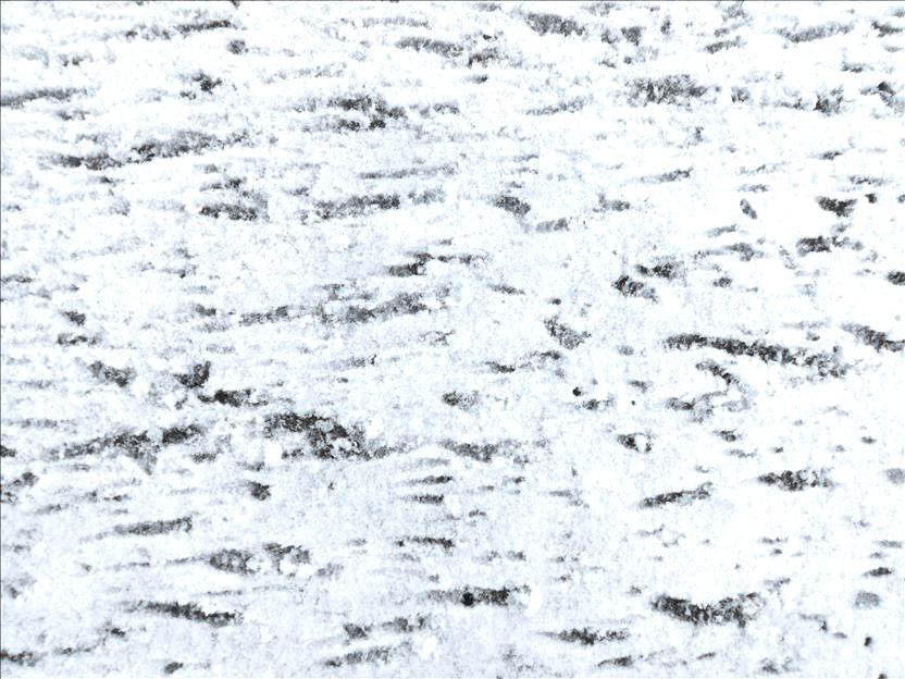 Sous la neige... la route