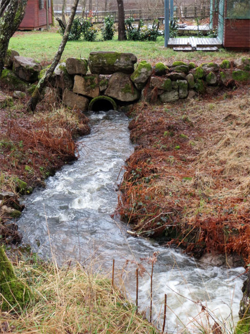 Le ruisseau à l\'origine des étangs