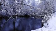 L\'étang n\'est pas encore gelé