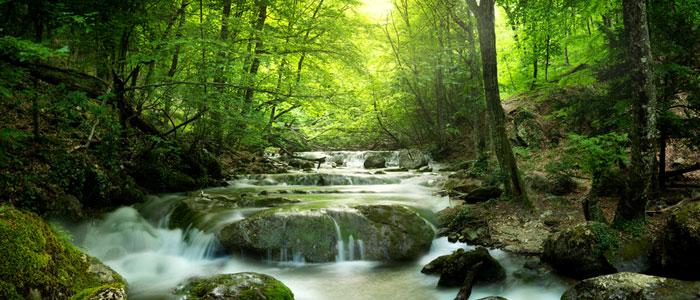 rivière Dordogne-Périgord
