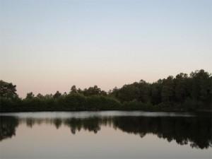 Un des étangs des parenthèses imaginaires au réveil