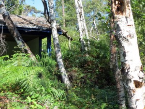 Avant, le toit enseveli