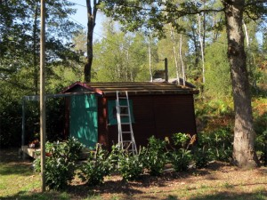 La dernière cabane à rénover