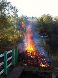 Le feu salvateur (Photo de Guyom)