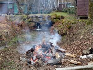 Le feu salvateur qui a mangé tout le bois inutile