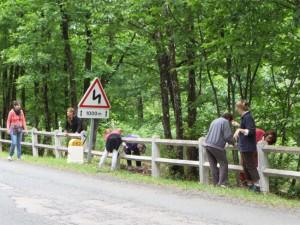 Tout le monde est occupé par le grattage des barrières
