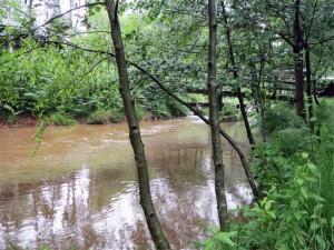 L'eau est très chargée après les pluies