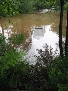 Le ponton du petit étang a presque disparu