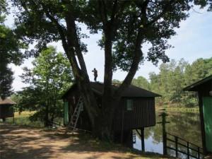 Françoise est sur le pont... euh, non, sur le toit... ;-)