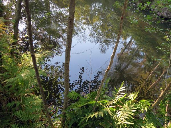 Vacances nature en Dordogne