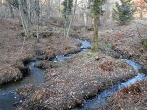 Le ruisseau peut continuer à couler tranquillement