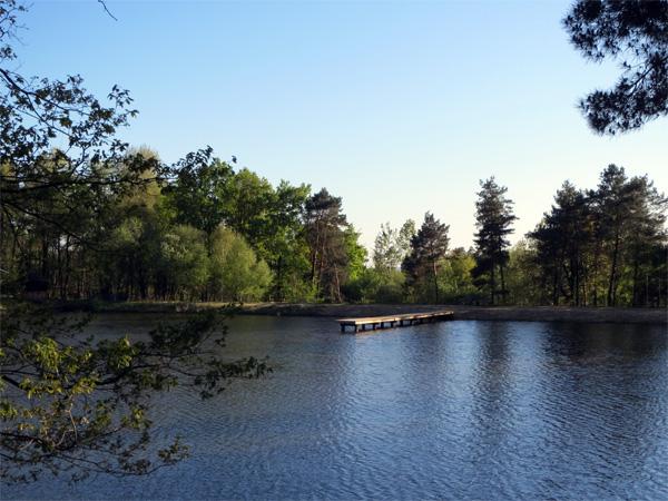 Un étang à croquer