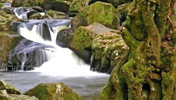 Saut du Chalard - Périgord vert