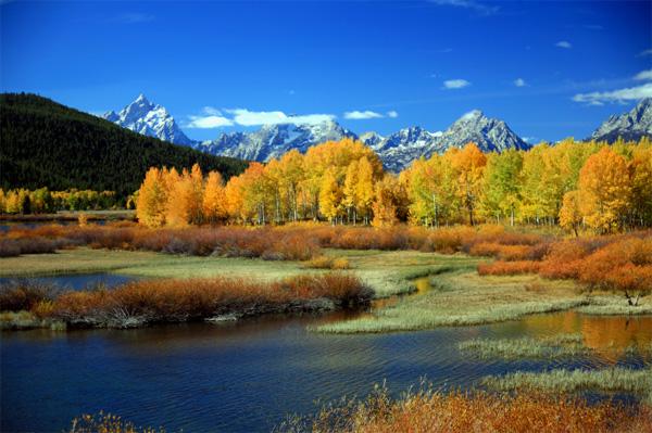Le Parc national de Yellowstone