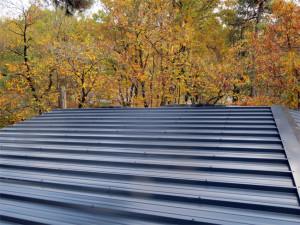 Gros plan sur la toiture