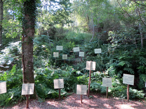 Forêt de citations
