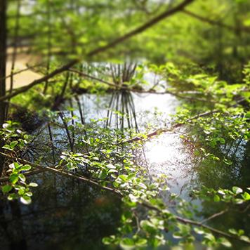 camping-perigord-vert-bassin