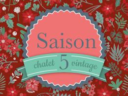 chalet-saison-5