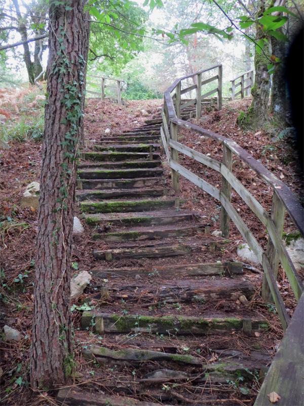 Un viel escalier
