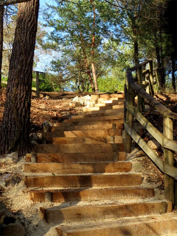 Un escalier tout neuf